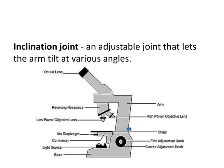 inclination joint of a compound microscope