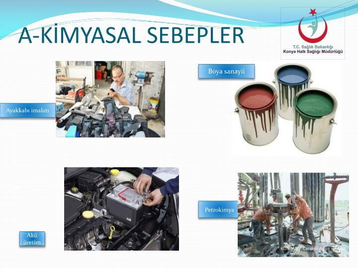 A-KİMYASAL SEBEPLER