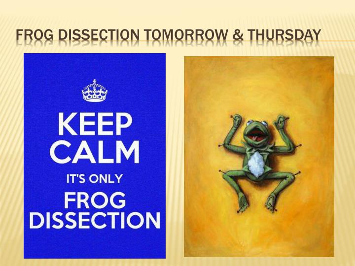 Frog dissection tomorrow &