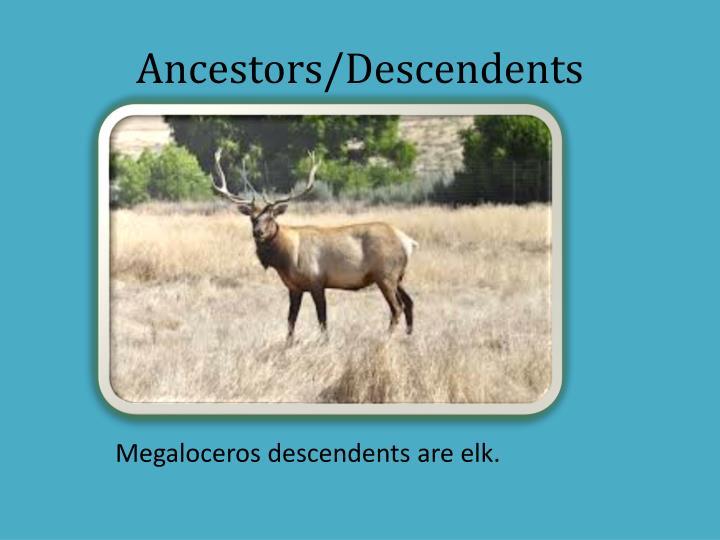 Ancestors/Descendents