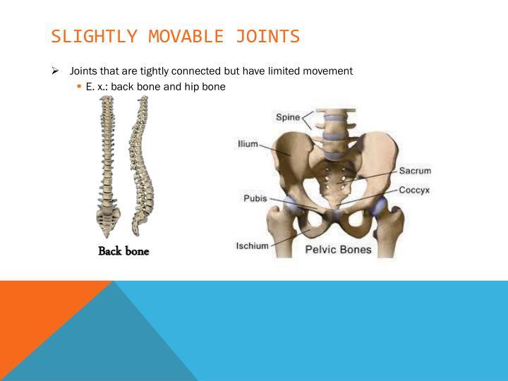 Slightly movable joints