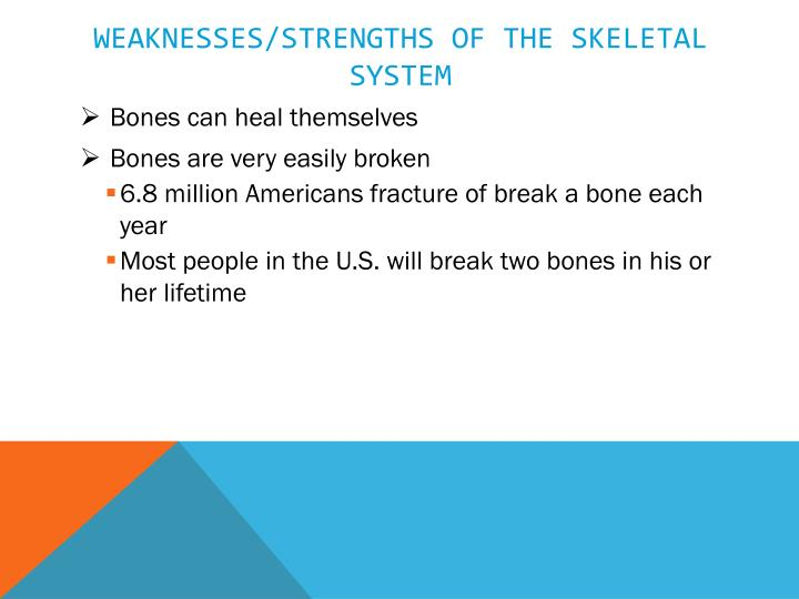 Weaknesses/strengths of the skeletal system