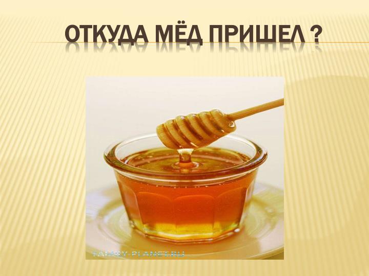 Откуда мёд пришел ?