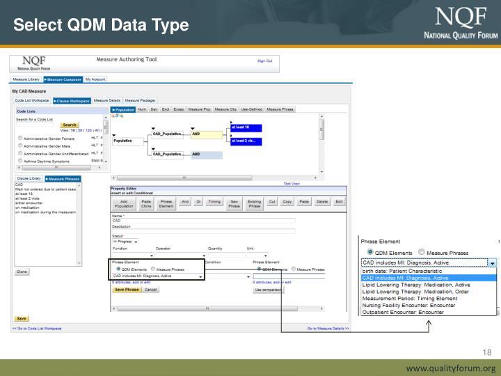 Select QDM Data Type