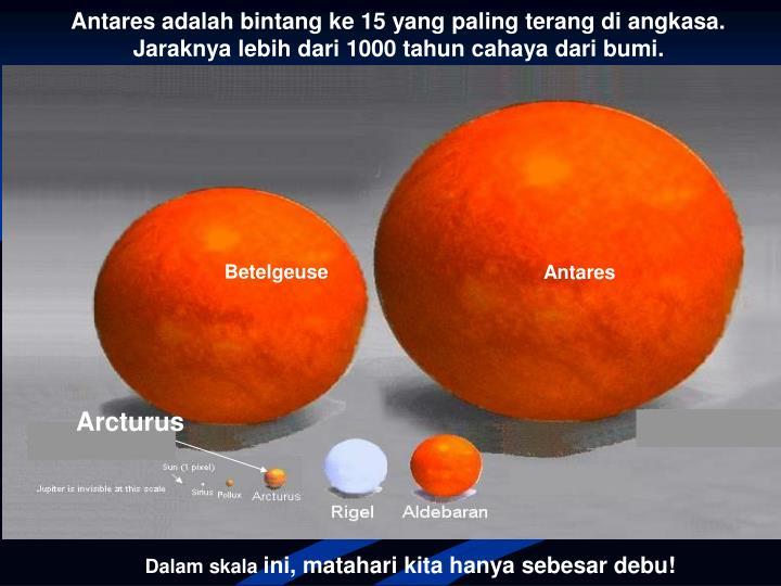 Antares adalah bintang ke 15 yang paling terang di angkasa.