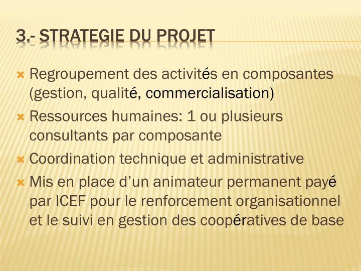 3 strategie du projet