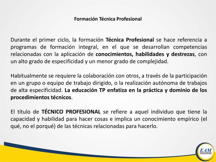 Formación Técnica Profesional