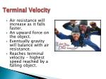 terminal velocity1