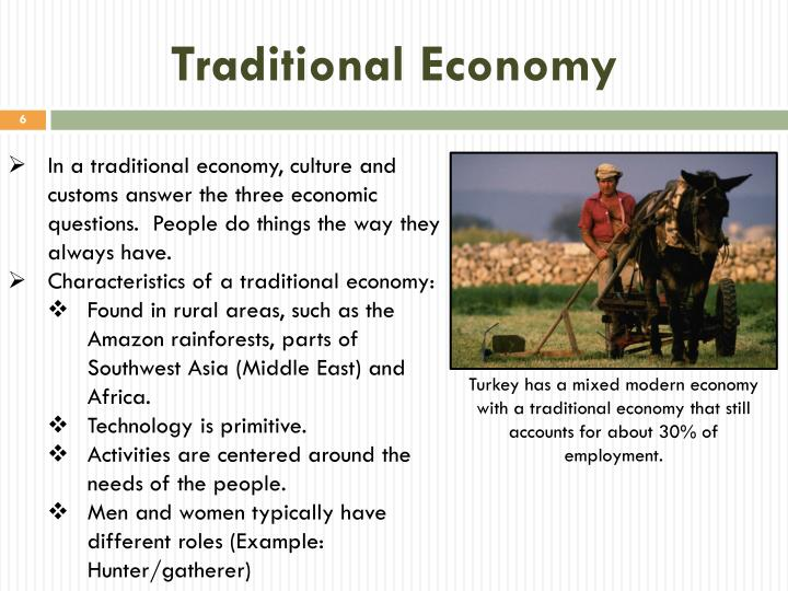What Is A Traditional Economy Leoncapers