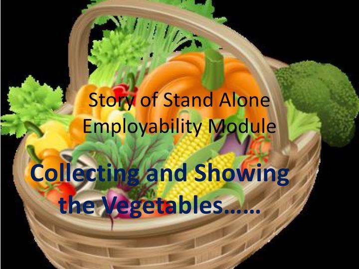 Story of stand alone employability module