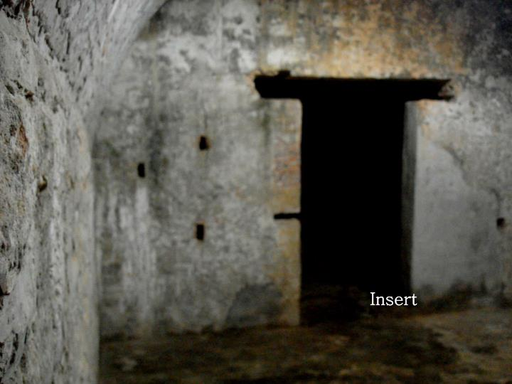 Insert
