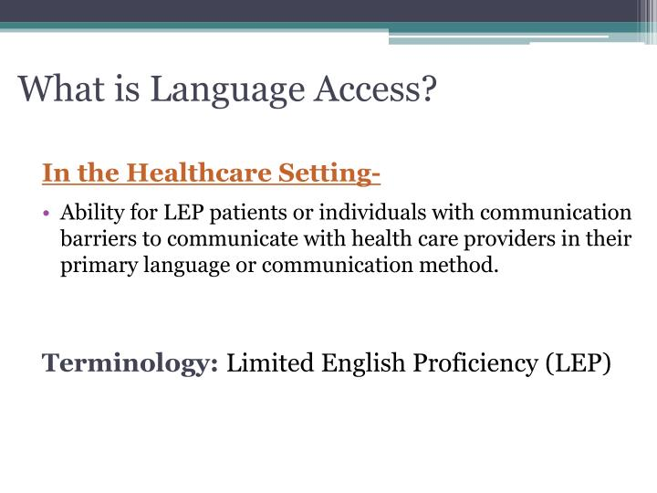 What is Language Access?