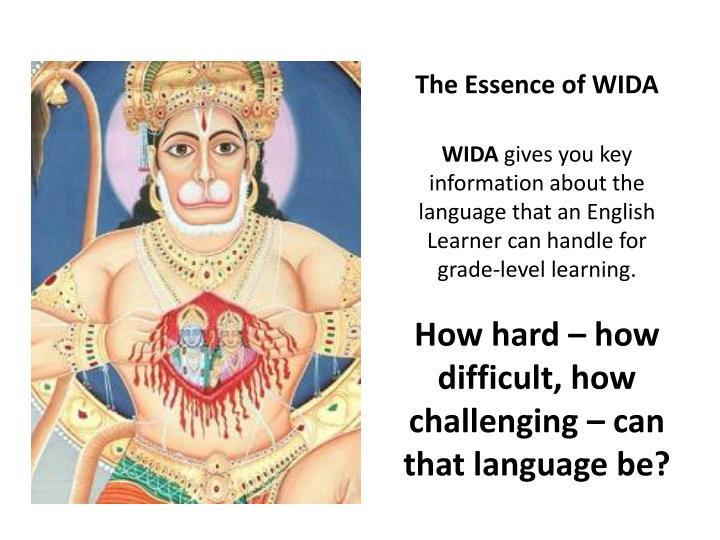 The Essence of WIDA