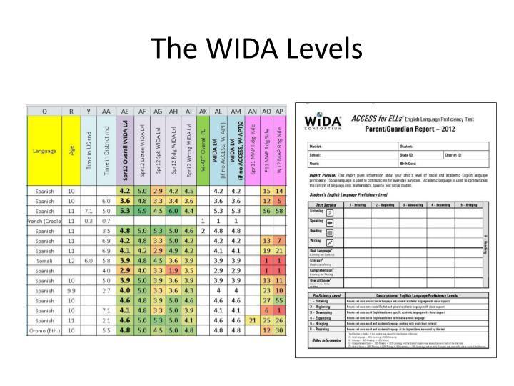 The wida levels