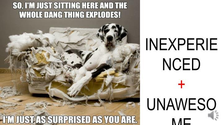 INEXPERIENCED
