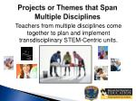 projects or themes that span multiple disciplines