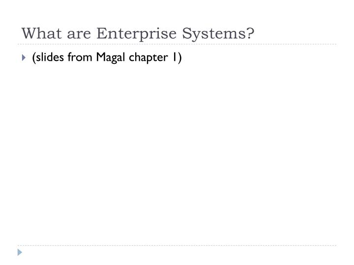 What are Enterprise Systems?