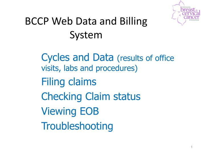 Bccp web data and billing system