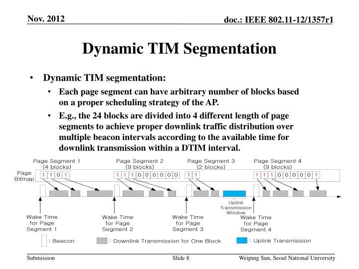 Dynamic TIM Segmentation