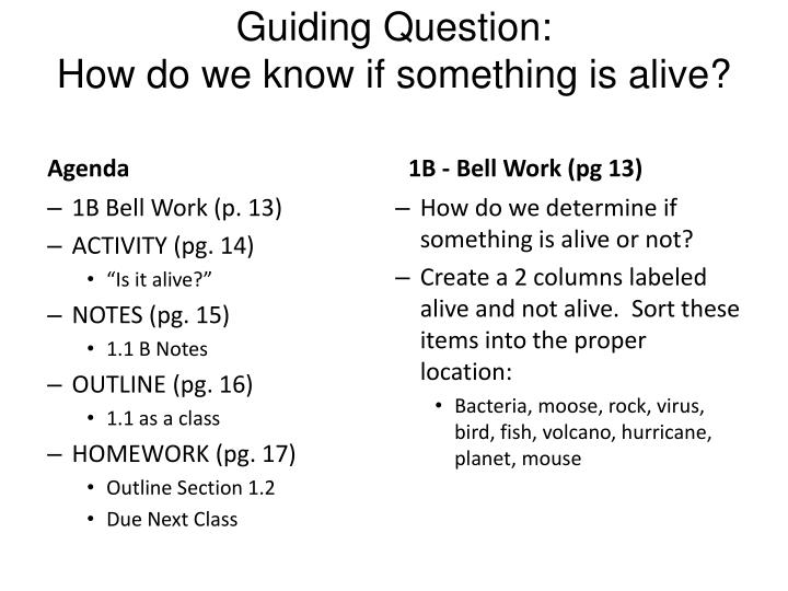 guiding question how do we know if something is alive n.