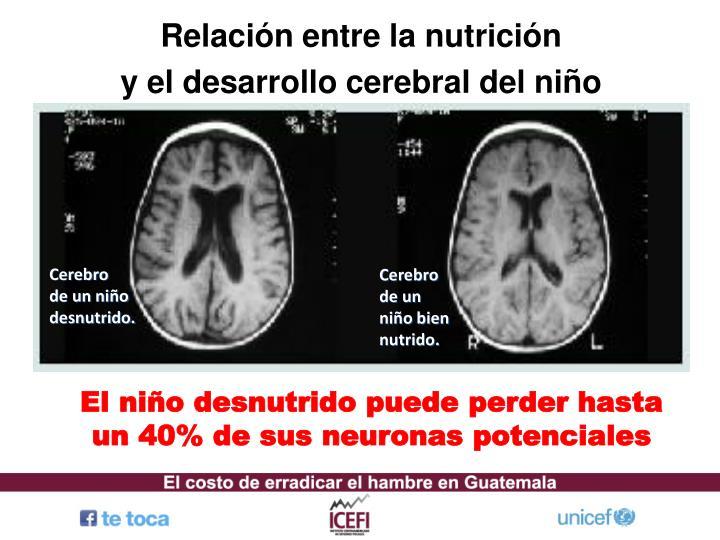 Relación entre la nutrición