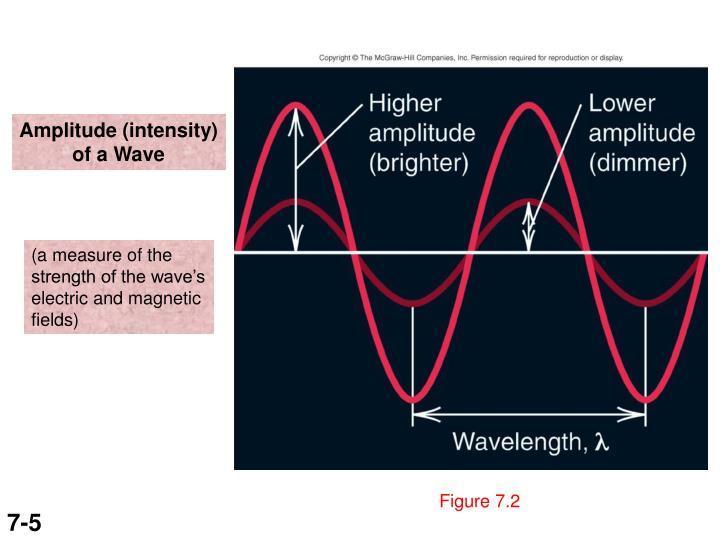 Amplitude (intensity)
