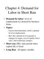 chapter 4 demand for labor in short run