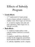 effects of subsidy program