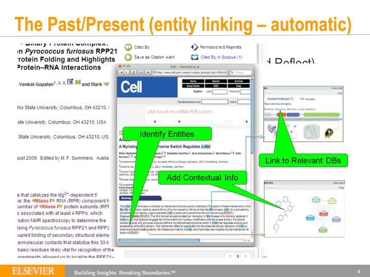 The Past/Present (entity linking – automatic)
