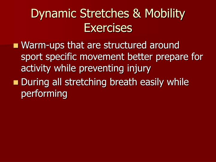 Dynamic stretches mobility exercises