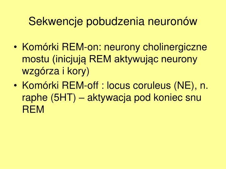 Sekwencje pobudzenia neuronów