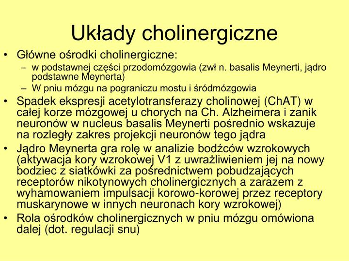 Główne ośrodki cholinergiczne: