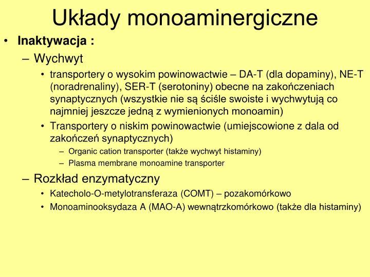 Układy monoaminergiczne