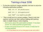 training a linear svm