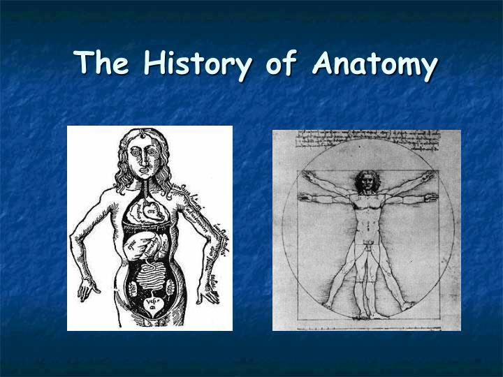 Ppt The History Of Anatomy Powerpoint Presentation Id3196242