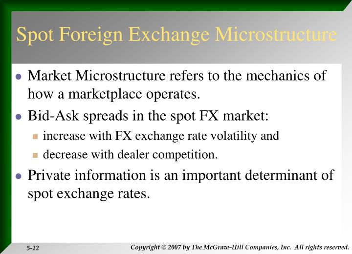 Spot Foreign Exchange Microstructure