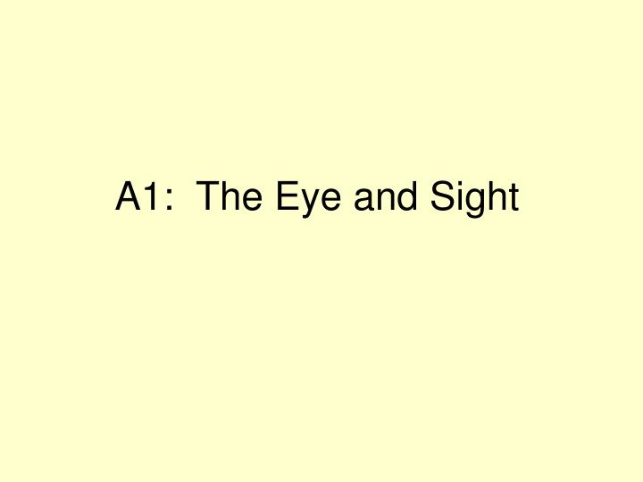 a1 the eye and sight n.