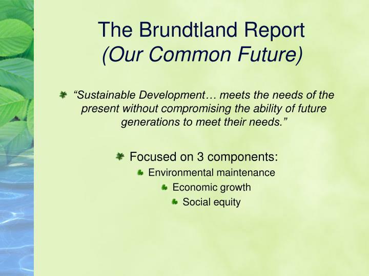 The Brundtland Report
