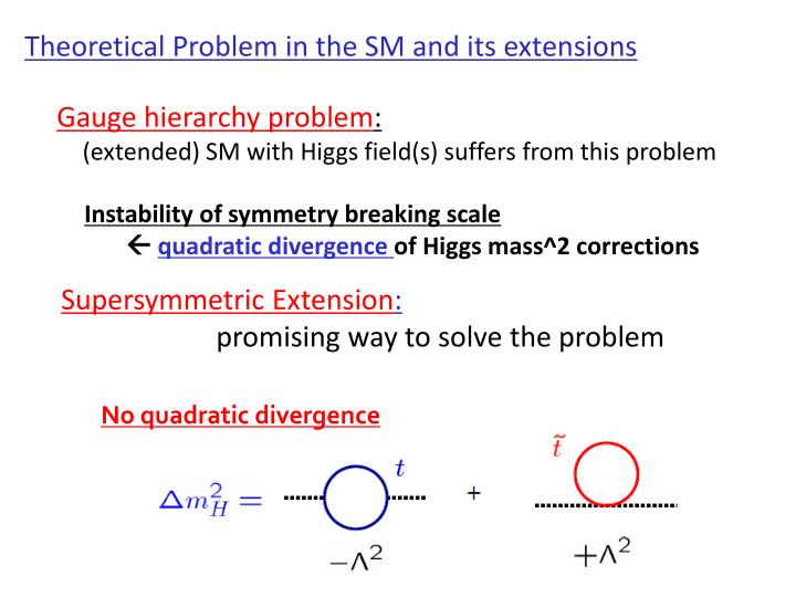 Theoretical Problem in the SM and its extensions