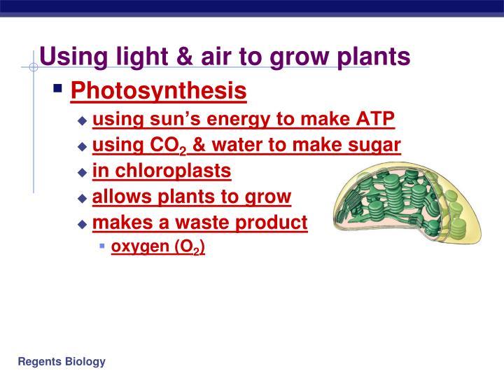 Using light & air to grow plants