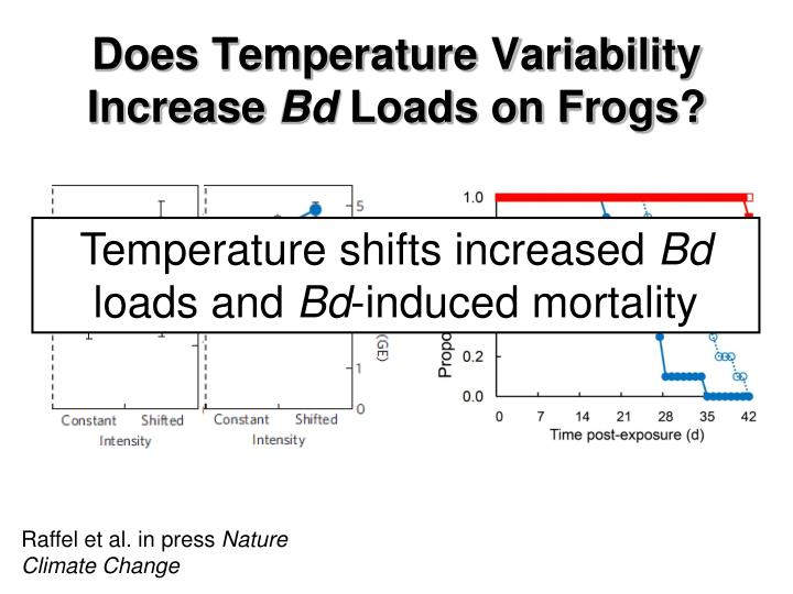 Does Temperature Variability Increase