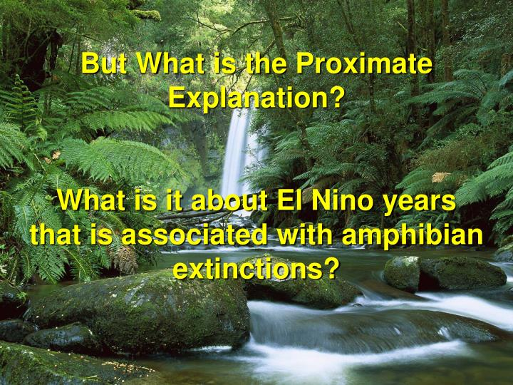 But What is the Proximate Explanation?