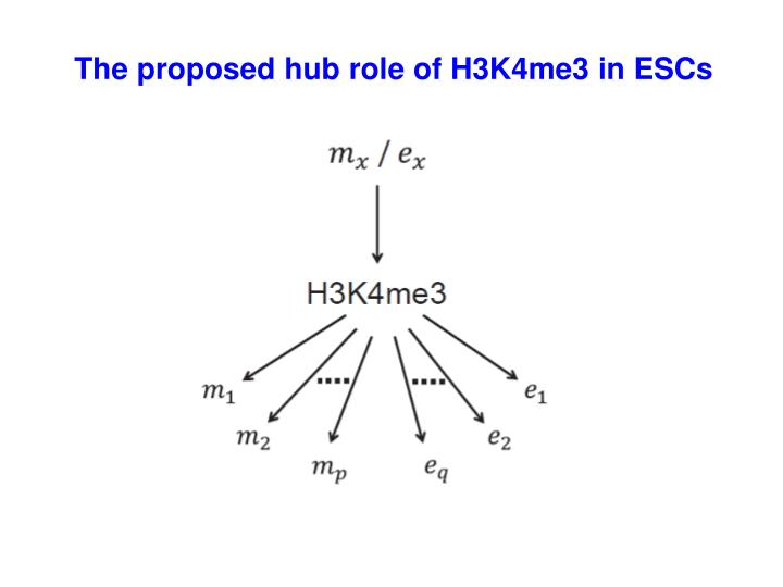 The proposed hub role of H3K4me3 in ESCs
