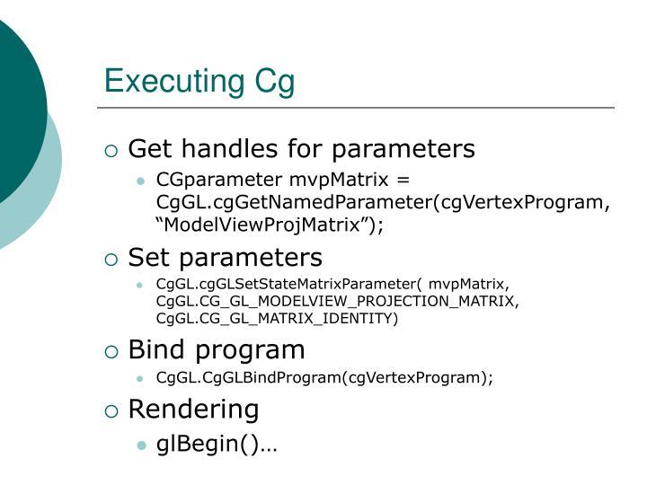 Executing Cg