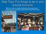 side trips fun things to do in and around knoxville