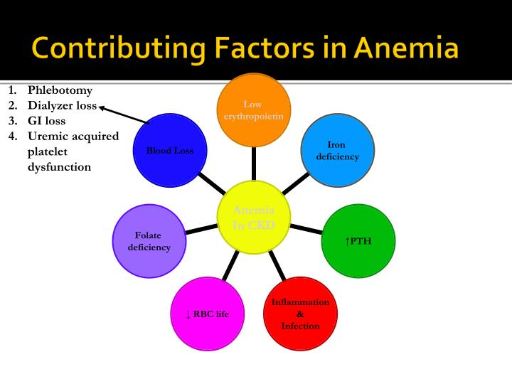 Contributing Factors in Anemia
