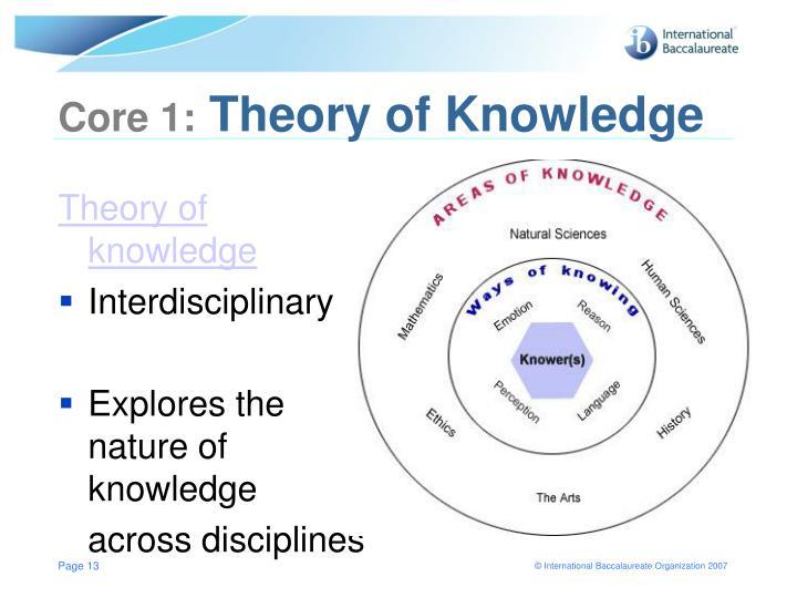 the nature of interdisciplinarit