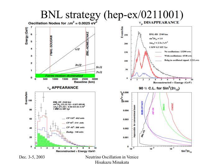 BNL strategy (hep-ex/0211001)