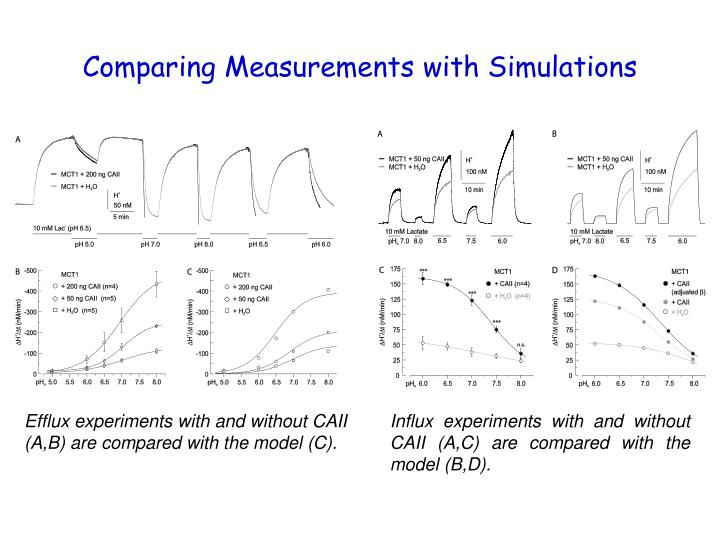 Comparing Measurements with Simulations