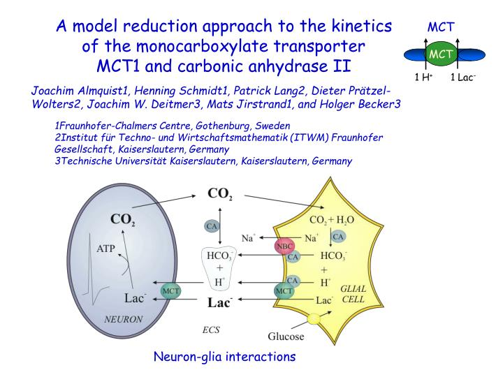 A model reduction approach to the kinetics